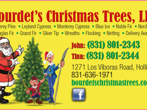 Business Cards (Bourdet's Christmas Trees)